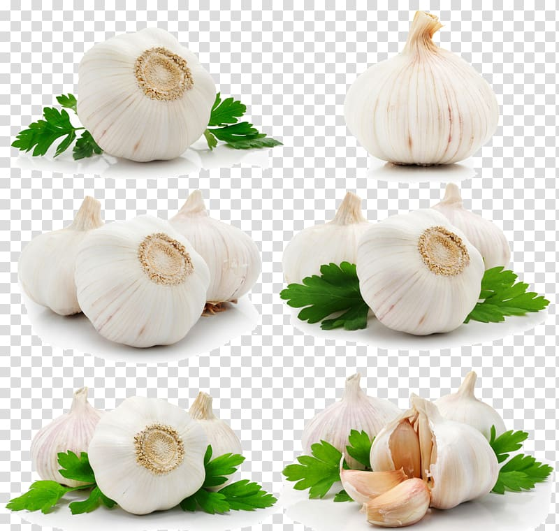Fruit queso blanco collection. Garlic clipart parsley