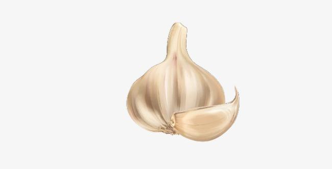 Vegetables png image and. Garlic clipart seasoning
