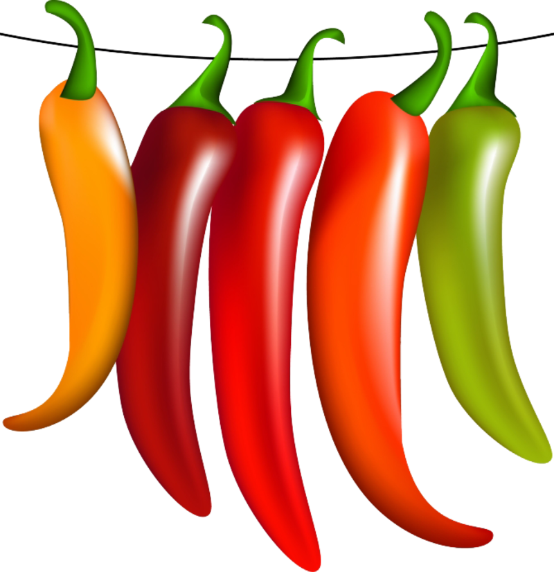 Hot and spices chilies. Jalapeno clipart chili garlic