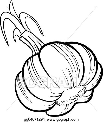 Garlic clipart vegetable. Clip art vector cartoon