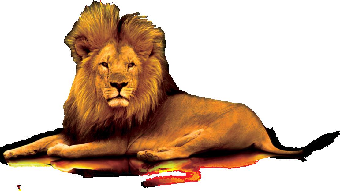 Lions clip art lion. Gate clipart big gate