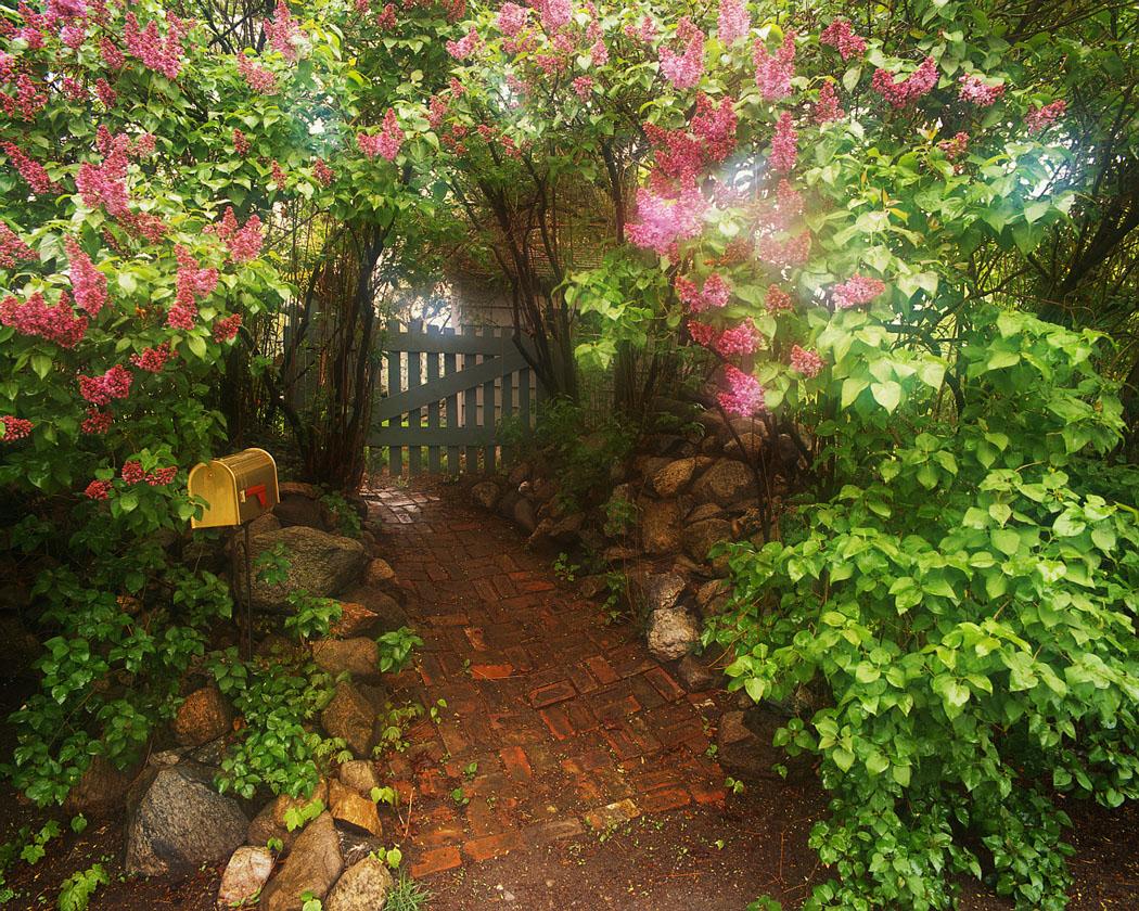 Clip art free n. Gate clipart garden tour