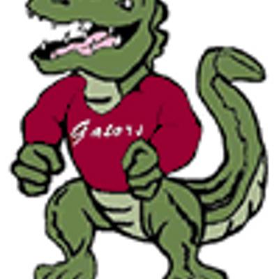 Lns athletics lnsathletics twitter. Gator clipart north star