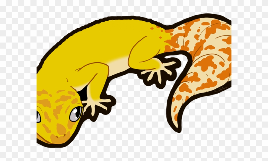 Leopard lizard feather png. Gecko clipart baby