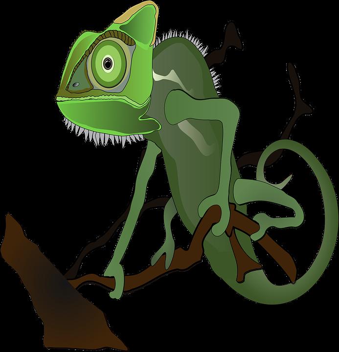 Gecko clipart cicak. Pictures of cartoon lizards