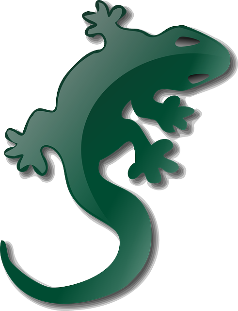 Gecko clipart cicak. Monitor lizard at getdrawings