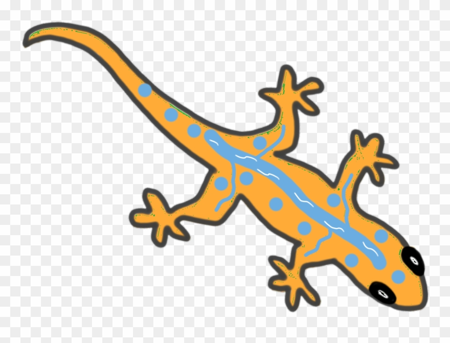Gecko clipart easy. Gekkonidae png download