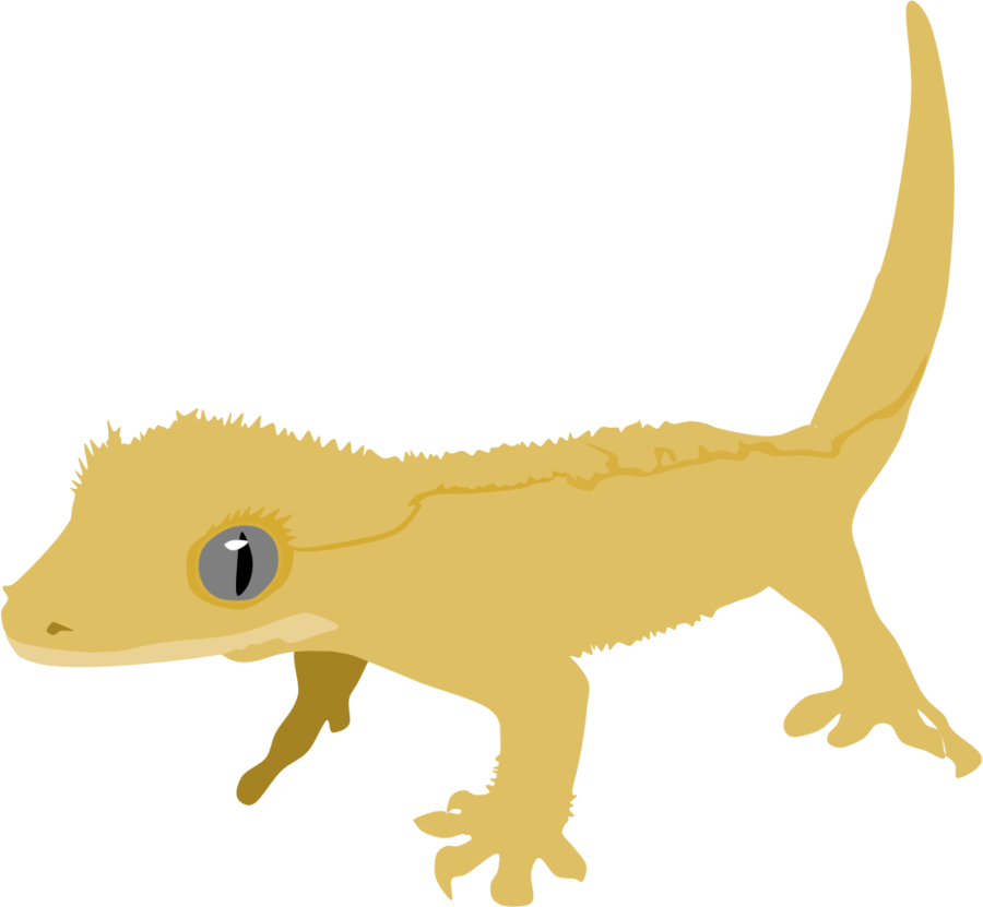 Gecko clipart face.  collection of crested