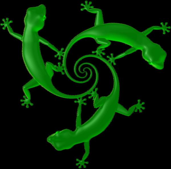 Tail holdings inc sa. Gecko clipart green gecko