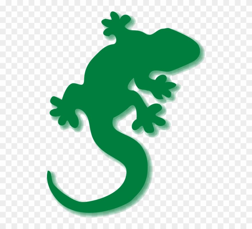 Gecko clipart green gecko. Lizards png download