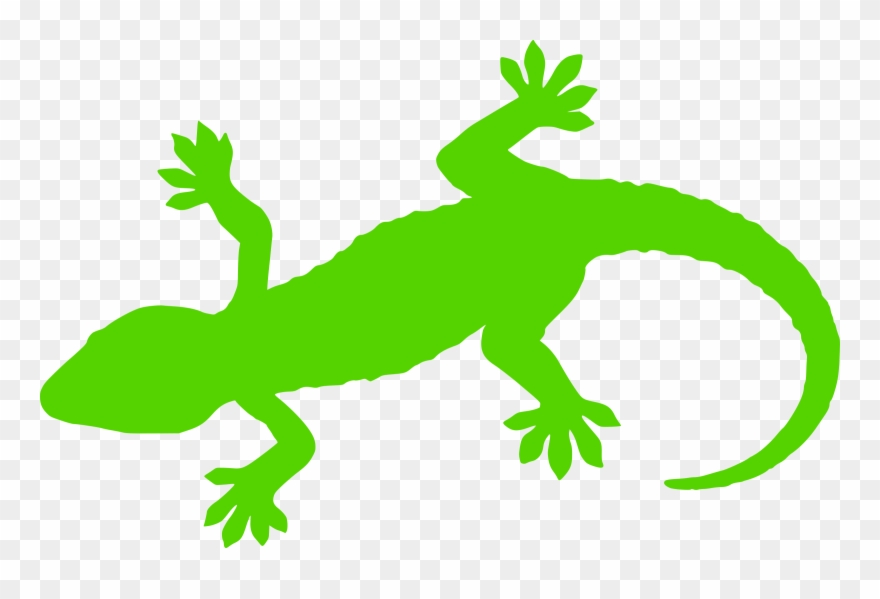 Silhouette inheritance real time. Gecko clipart green gecko