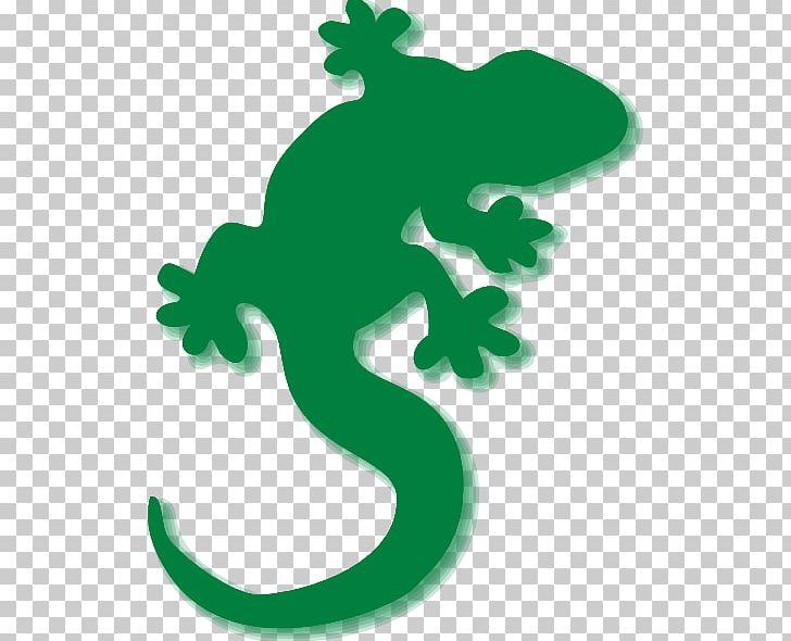 Gecko clipart iguana. Lizard common iguanas chameleons