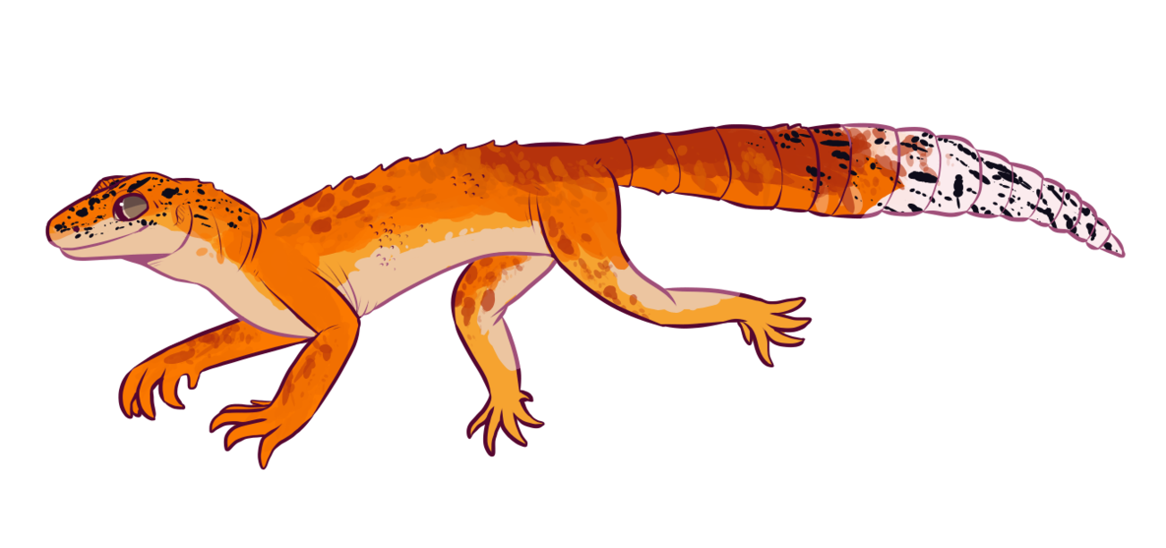 Greater spotted by swilwolf. Gecko clipart leopard gecko