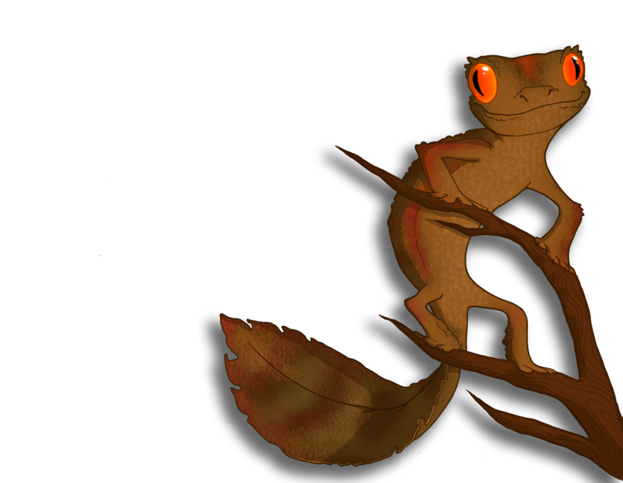 Satanic leaf tailed by. Gecko clipart line art