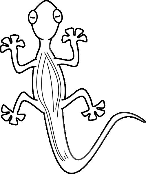 Pics photos gecko drawing. Lizard clipart drawn