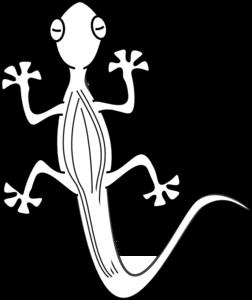Lizard clipart drawn. Outline clip art craft