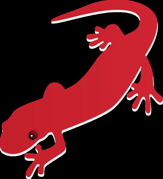 Reptile artwork png royalty. Gecko clipart newt
