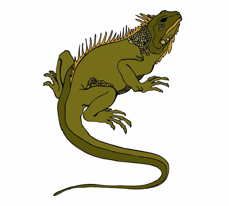 Gecko clipart pet lizard. Horned png transparent