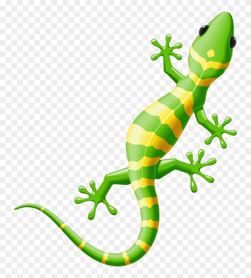 Lizard clipart yellow spot. Iguana spotted free on