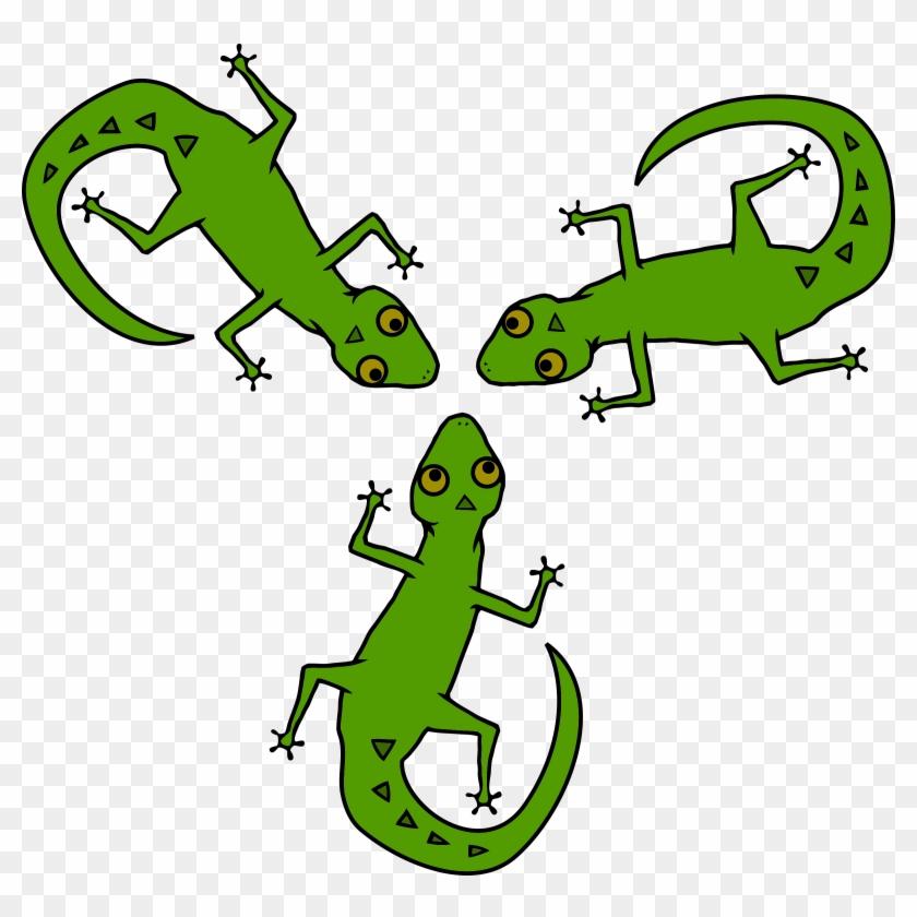 Gecko clipart salamander. Lizard lizards hd png