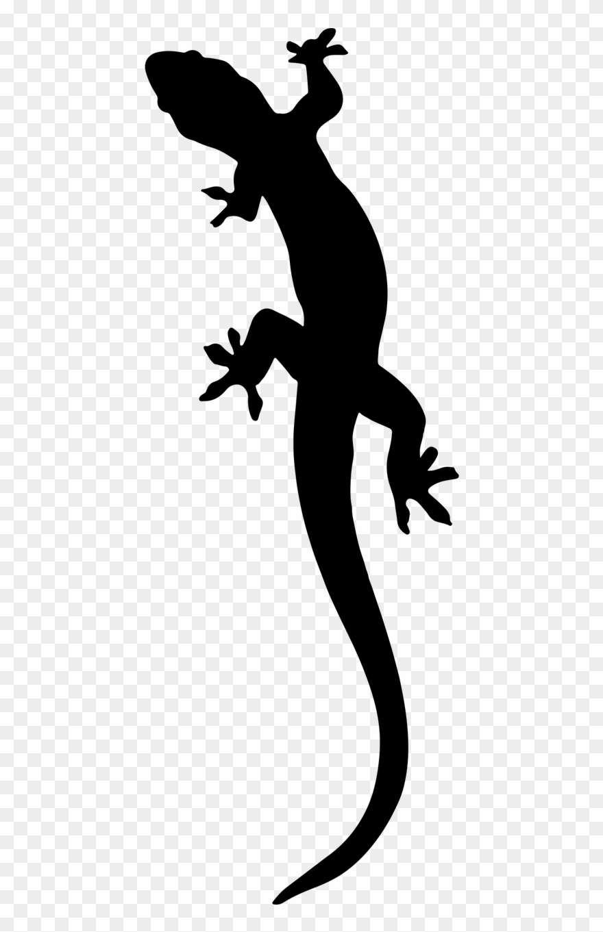 The best free Lizard silhouette images. Download from 84 ... |Salamander Silhouette