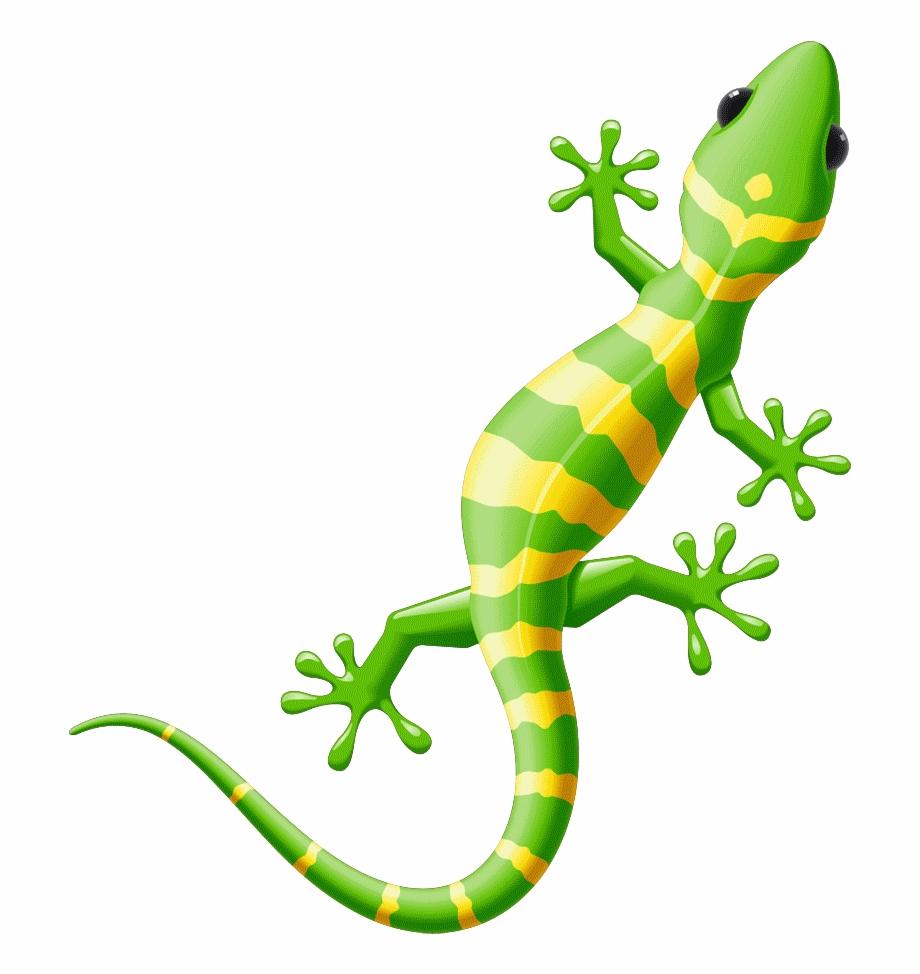 Gecko clipart small lizard. Iguana yellow spotted free