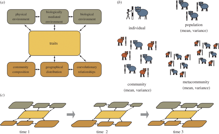 A environmental ecological and. Geography clipart ecosystem