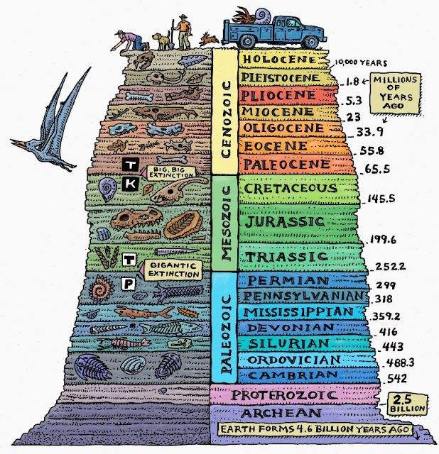 Geology clipart geologic time.  interesting facts about