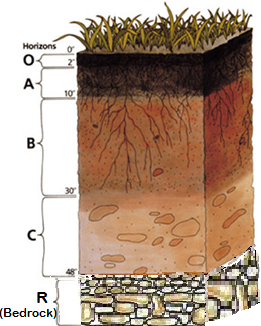 Profiles and properties learning. Geology clipart importance soil