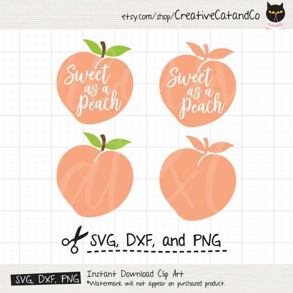 Peach clipart svg. Pin on products