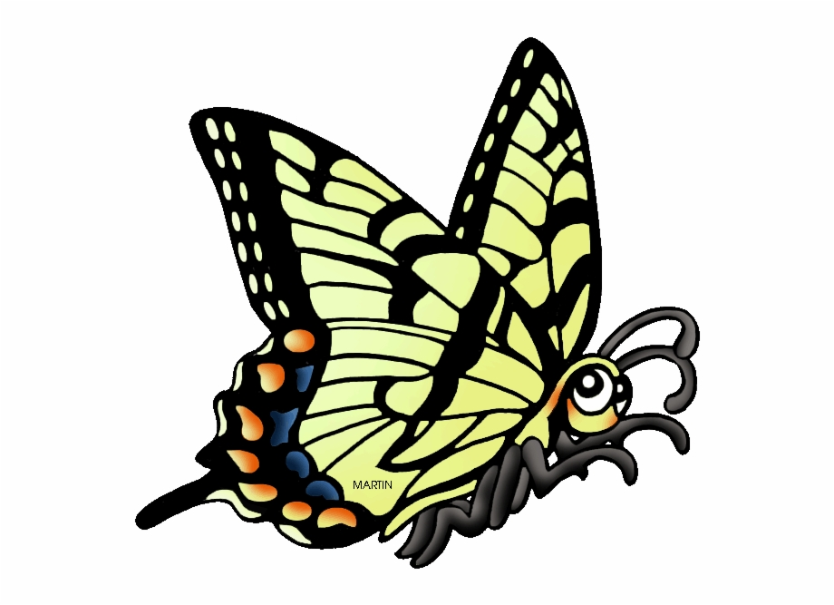 Georgia clipart ga state. Pictures of insects free