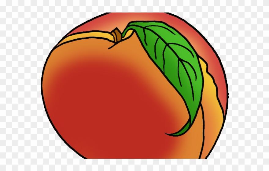 Ga png transparent . Peach clipart georgia peach