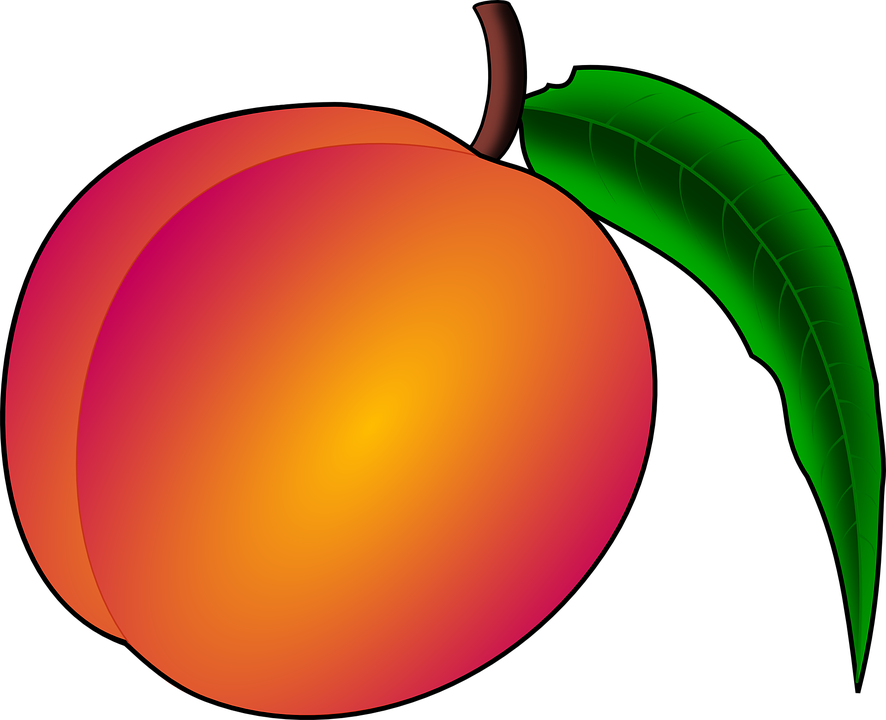 Vector png motion graphics. Peach clipart peach slice