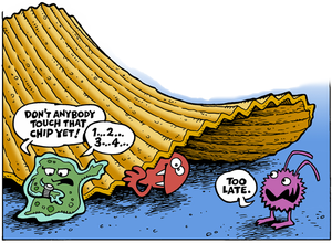 Germs clipart food microbiology. Five second rule wikipedia