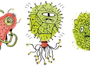 Germs clipart fungus bacteria. It s catching children