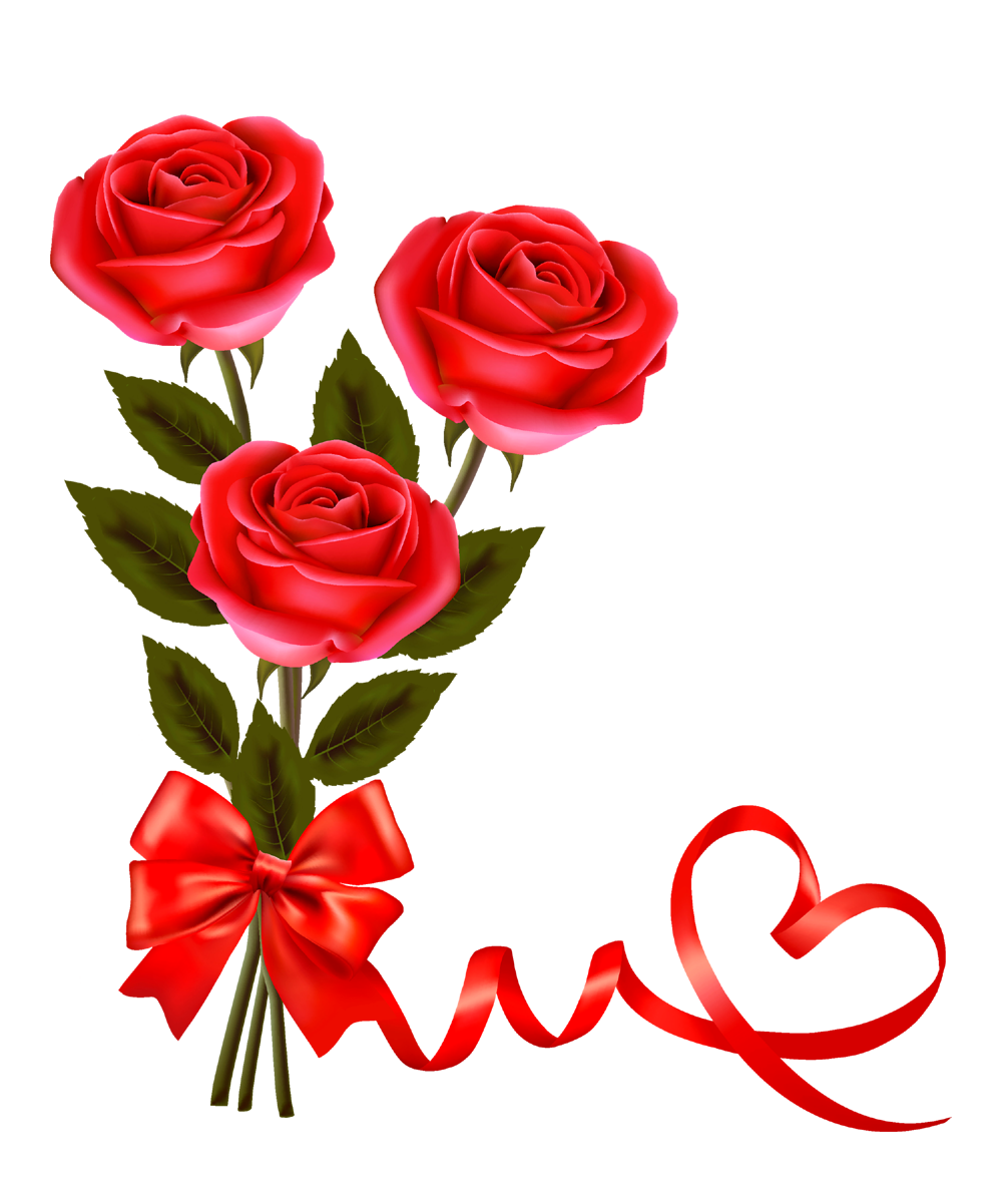 Valentine red rose png. Gift clipart love gift