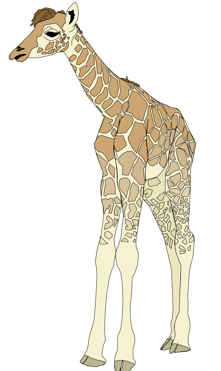 Giraffe clipart adaptation. Ginger coons learns to