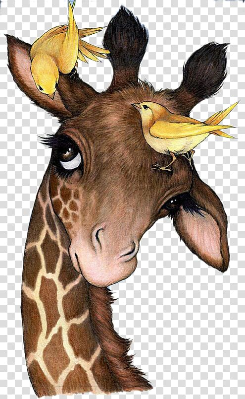 Giraffe clipart bird. And illustration northern painting