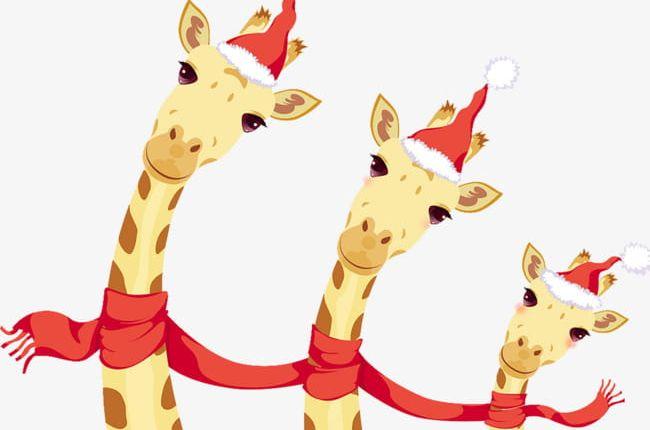 Giraffe clipart christmas. Png cartoon