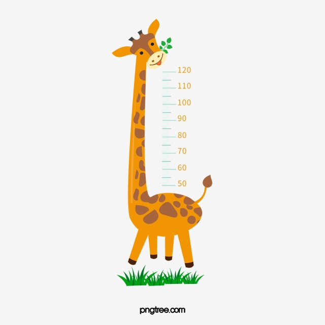 Height png vector psd. Giraffe clipart difference