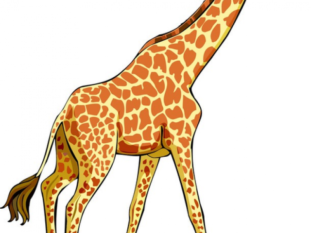 Giraffe clipart difference. Free download clip art