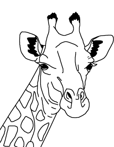 Giraffe clipart face drawing. Coloring page free printable