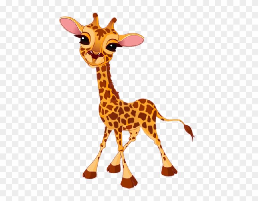 giraffe clipart girrafe