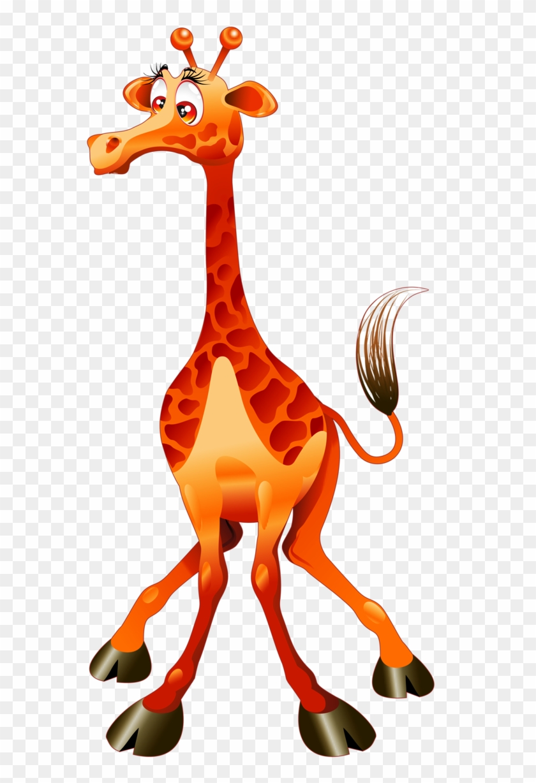 Giraffe clipart group giraffe.  giraffes cartoon funny