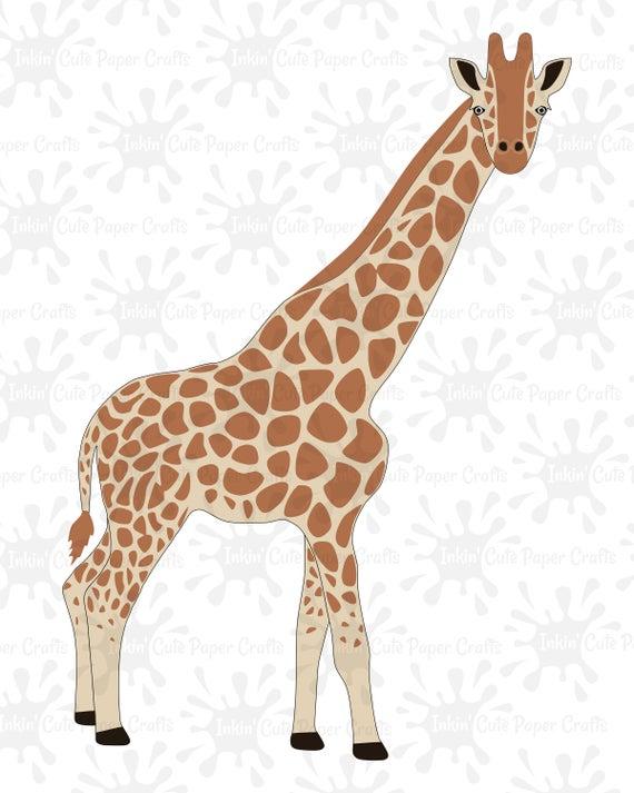 Svg cut file clip. Giraffe clipart realistic