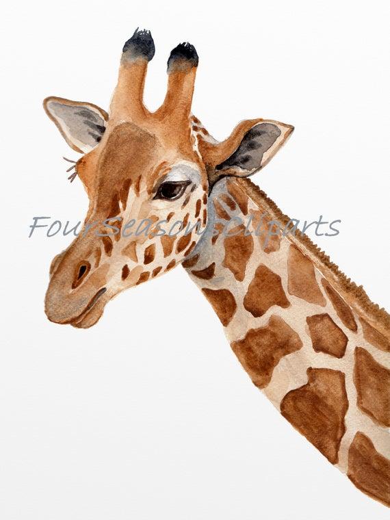 Giraffe clipart watercolor. Printable art wall decor