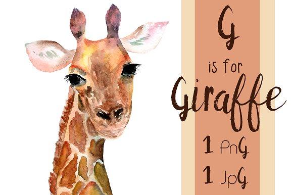 Giraffe clipart watercolor. Watercolour photo at the