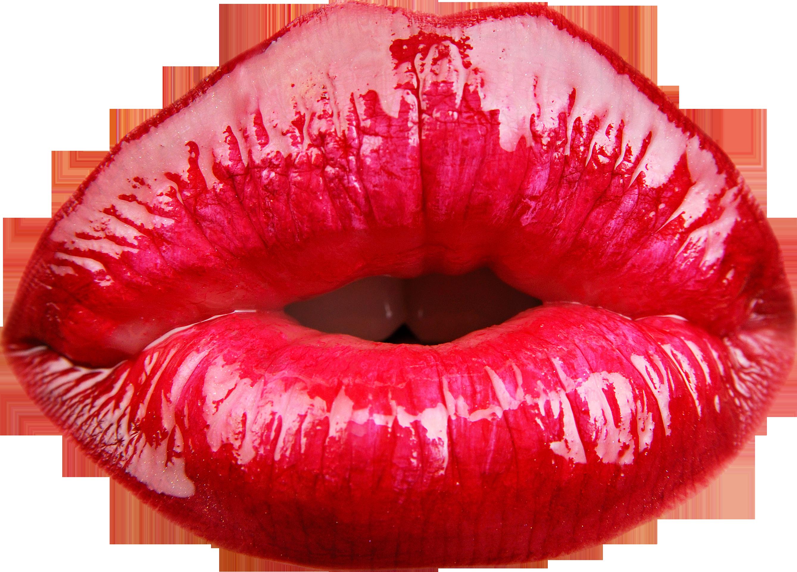 Lips png image free. Lip clipart female lip