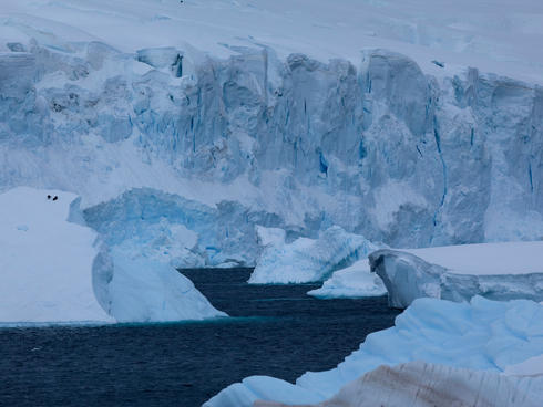 Why are glaciers and. Glacier clipart habitat arctic