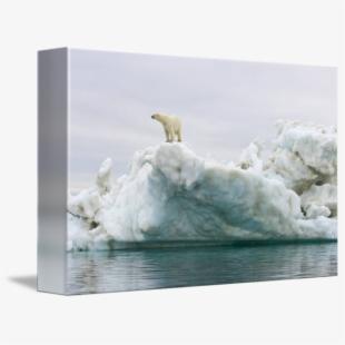 Tile download . Glacier clipart landscape arctic